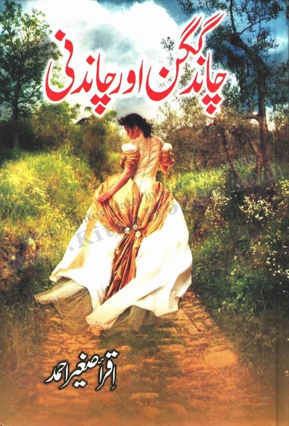 Chaand Gagan Aur Chandnee (Urdu Novel)