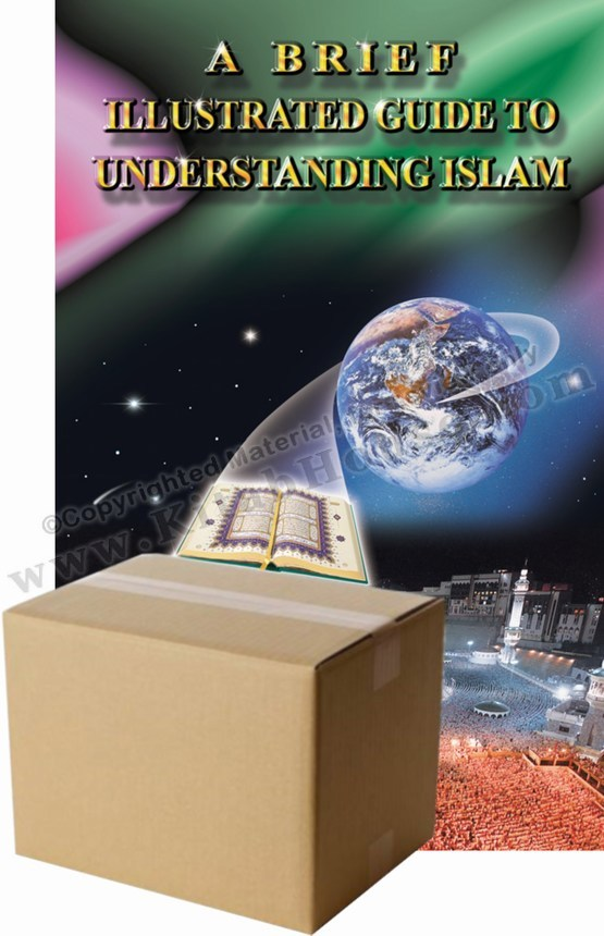 A Brief Illustrated Guide To Understanding Islam, Box of 50 - Dawah Price